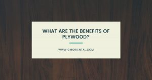 What are the Benefits of Plywood?